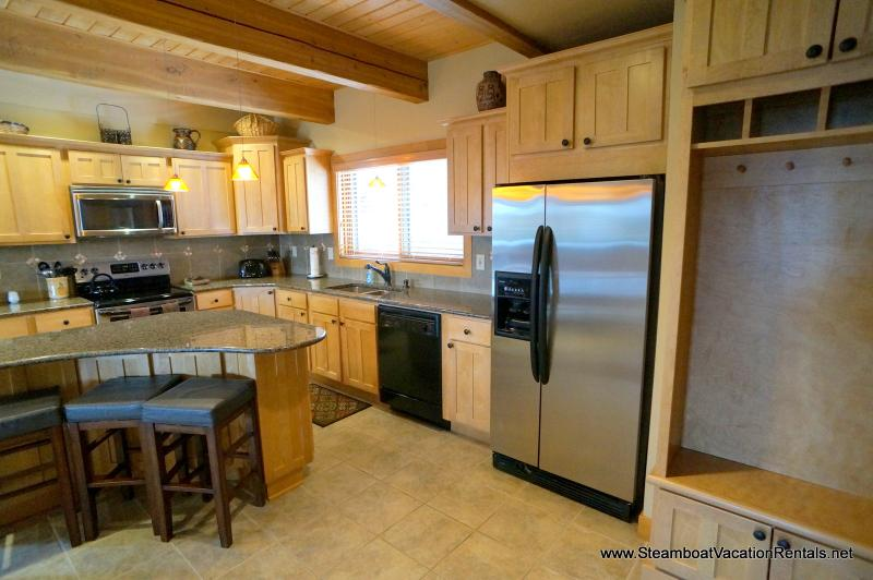 Waterford Townhome #22 - Image 1 - Steamboat Springs - rentals