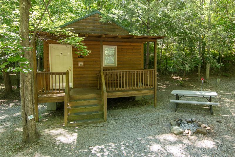 Wooded area with picnic table at site and firepit - Studio Cabin/Pet Friendly/Sleeps 5 Great Family Camp Cabin! - Gatlinburg - rentals