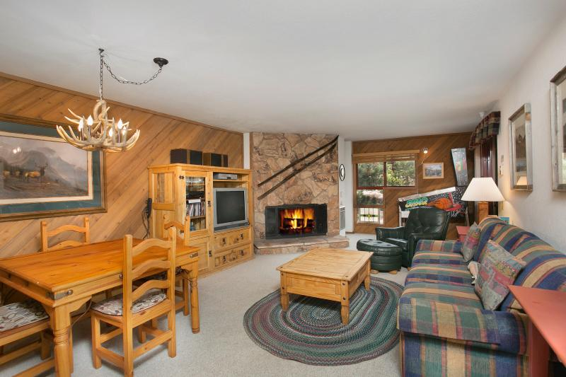Aspen Creek #209 Living Area With A Queen Sofabed - Aspen Creek 209 - Mammoth Rental - Near Eagle Lift - Mammoth Lakes - rentals