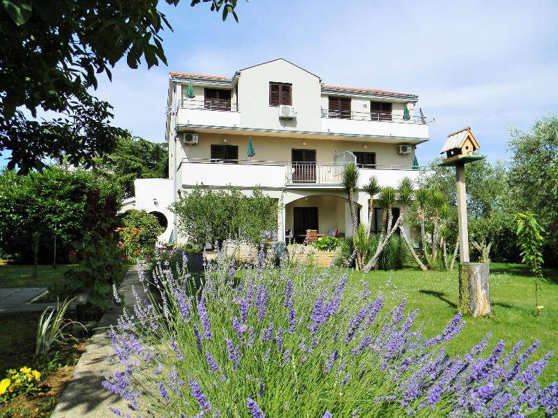 house - 00418ZATZ A2(2+2) - Zaton (Zadar) - Zaton (Zadar) - rentals