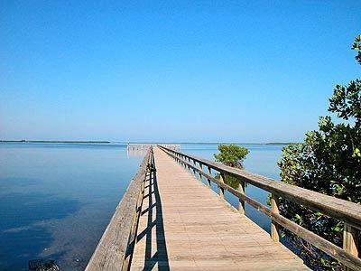 Paradise found on Terra Ceia Bay with a private fishing pier and mangrove walkway - Paradise on the Bay - Palmetto - rentals