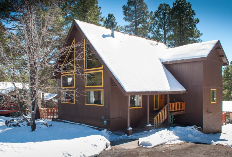 The cabin the winter - Sale weekday: jan,feb,march 20%off 3 bed+Den Nakai Chalet  Luxury/furnishings - Flagstaff - rentals