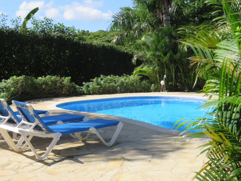 Private Pool - Romantic Oceanview Villa, Daily Maid, Gated Comm - Sosua - rentals