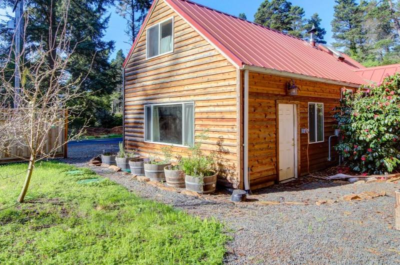 Quiet, dog-friendly cabin close to the beach with tons of character! - Image 1 - Otter Rock - rentals