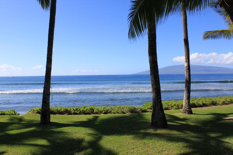 View from house - Oceanfront Paradise - Lahaina - rentals
