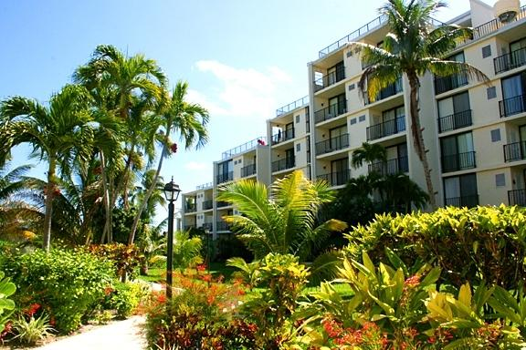 Our Court Yard - Ocean Front Coral Beach Condo, Beautifully Renovat - Freeport - rentals