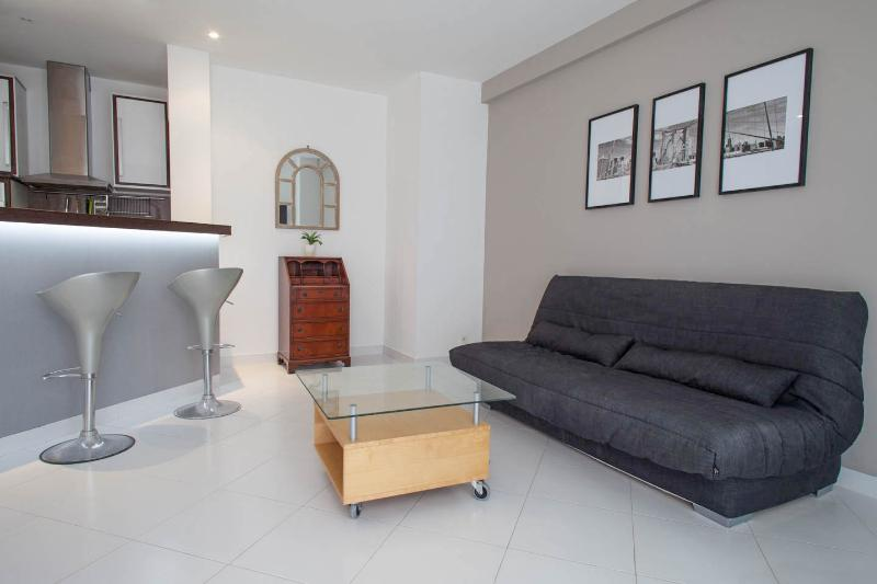 Superb Rental with AC and Balcony, Close to Croisette and Rue d'Antibes - Image 1 - Cannes - rentals