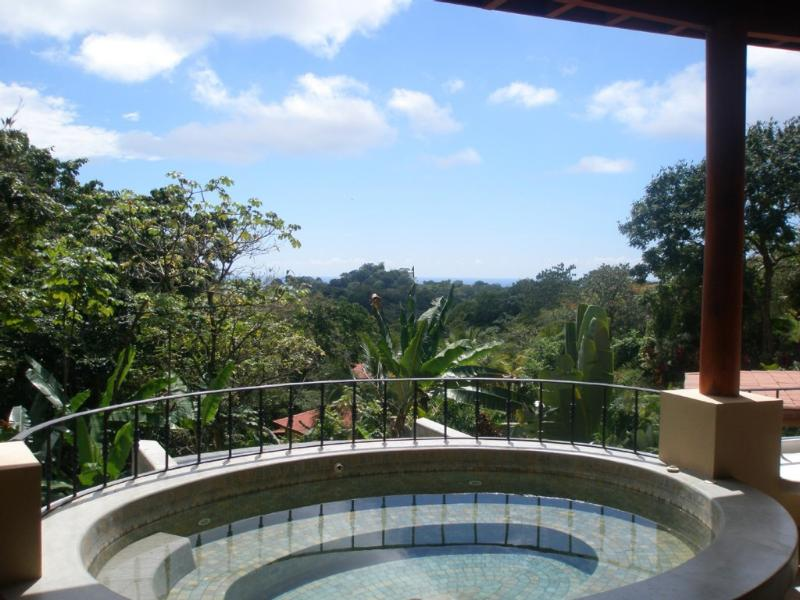 Ocean view, Pool & Jacuzzi WOW! Come meet the love - Image 1 - Manuel Antonio - rentals