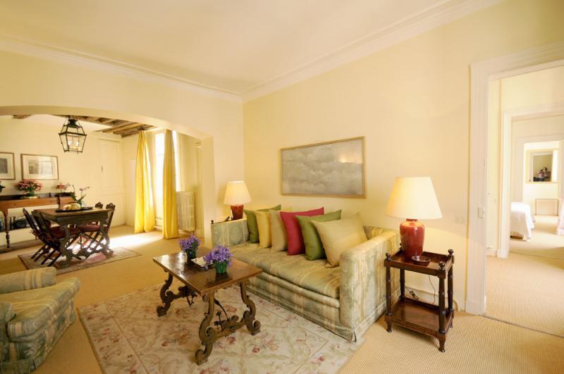 Living room - 2nd Floor 1 Bedroom Apartment in Paris at Place Furstemberg - Paris - rentals