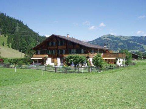 Baumerhus ~ RA9904 - Image 1 - Gstaad - rentals