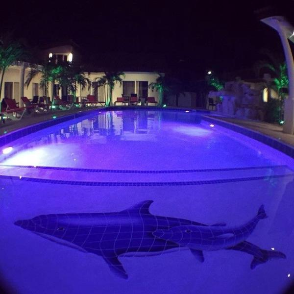 Swiss Paradise Aruba Loft Suite 3-53 - Image 1 - Noord - rentals