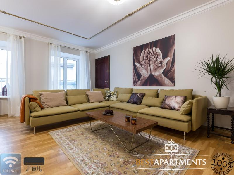 Viru  luxury apartment with aircon - Image 1 - Estonia - rentals