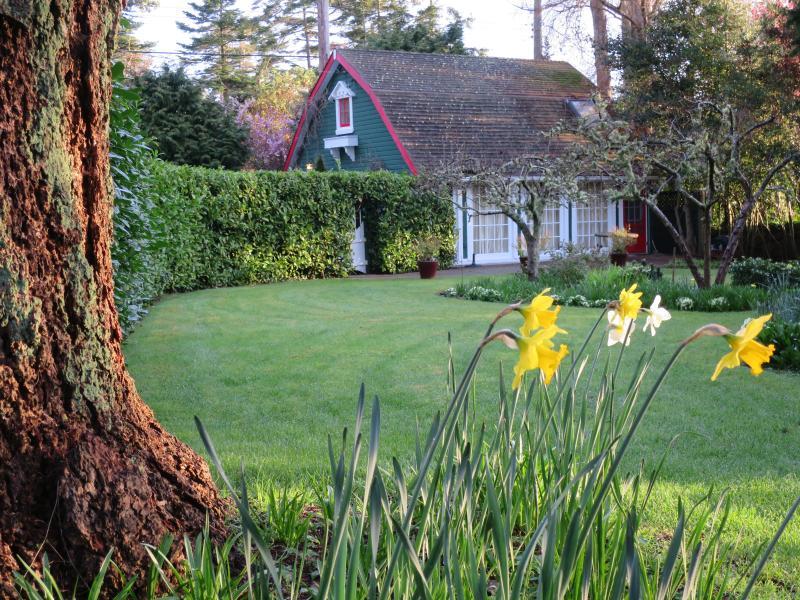 Sunrise Garden Cottage in March 2015-enchanting - Sunrise Garden Cottage - a warm and cozy retreat - Victoria - rentals