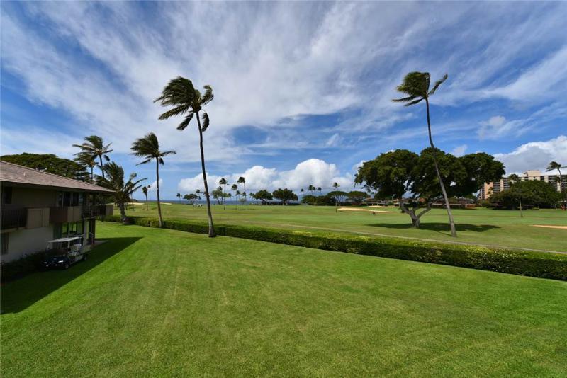 Maui Eldorado: Maui Condo J221 - Image 1 - Ka'anapali - rentals