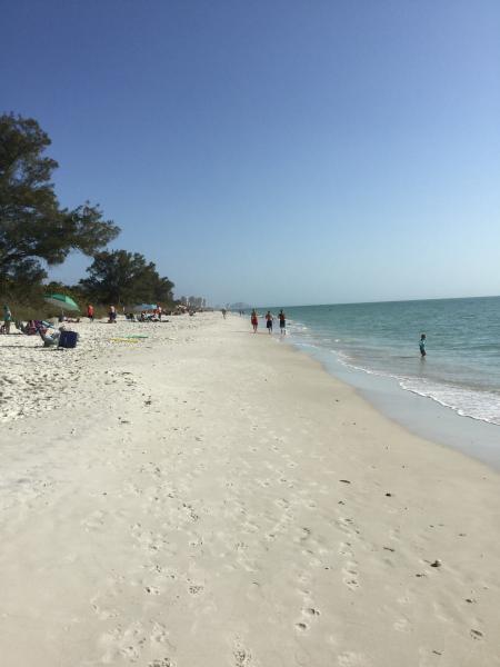Vanderbilt Beach/Delnor Wiggins Pass State Park - Comfortable condo at Vanderbilt Beach, Naples FL - Naples - rentals
