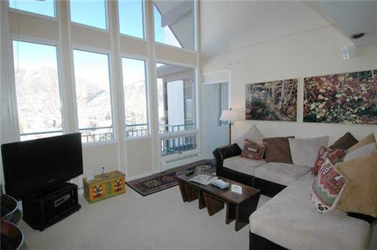 Convenient Aspen Colorado vacation rental - Fifth Avenue 306 - Aspen - rentals