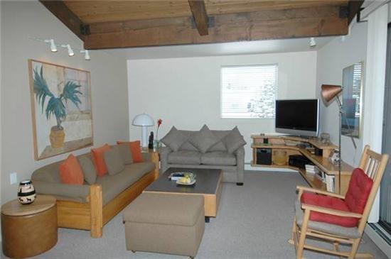 Convenient Aspen Colorado vacation rental - Galena 301 - Aspen - rentals