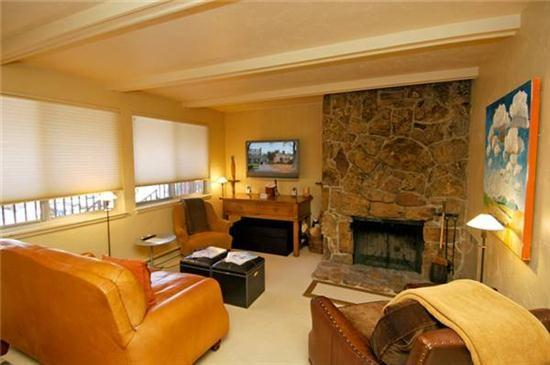 Convenient Aspen Colorado vacation rental - Silverglo 302 - Aspen - rentals