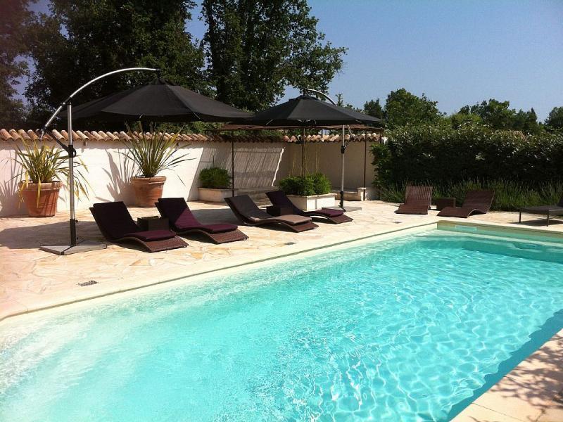 Large, Total privacy, Pool area 10 sunbeds and cushions - Villa Regina, four bedroom villa, St Cezaire - Saint-Cezaire-sur-Siagne - rentals