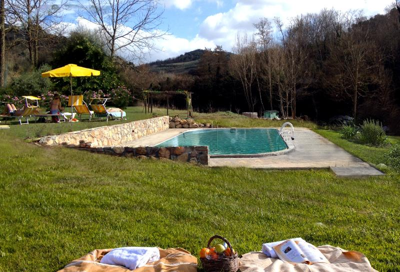 Outdoor Pool - Molino di Amarrante in Chianti - Private Pool - Montaione - rentals