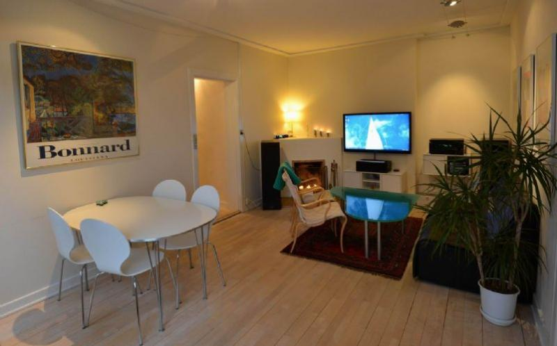 Clarasvej Apartment - Nice Copenhagen apartment with fireplace near Bakken - Copenhagen - rentals