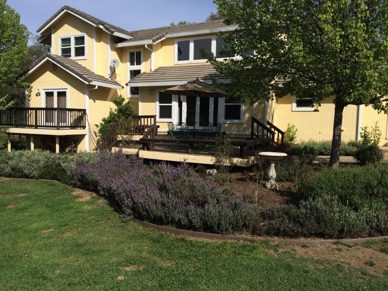 Spring and winter view back of the house with deck.  Lavender blooming - Beautiful property on  Cherry Orchard - Cameron Park - rentals