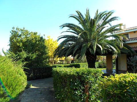 Residence Costa Ottiolu ~ RA36406 - Image 1 - Luddui - rentals