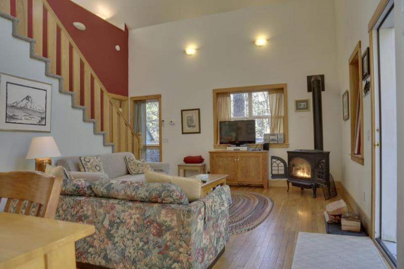 Pet-friendly cabin in the woods with private hot tub! - Image 1 - Brightwood - rentals