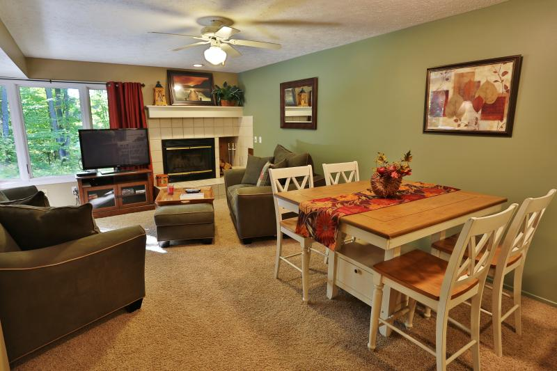 Beautiful 2 bedroom two bath condo - Trout Creek Condo Vacation Rentals -Harbor Springs - Harbor Springs - rentals