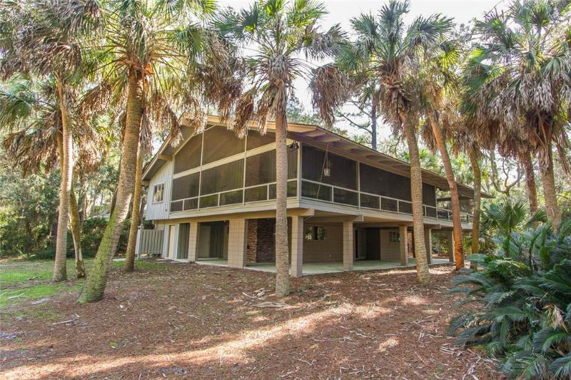 South Beach Lane 3 - Image 1 - Hilton Head - rentals