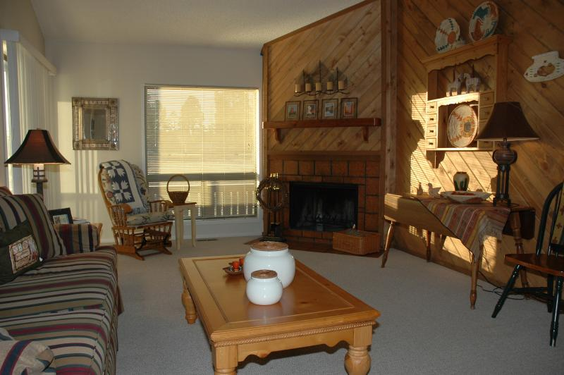 PINES4038 - Image 1 - Pagosa Springs - rentals