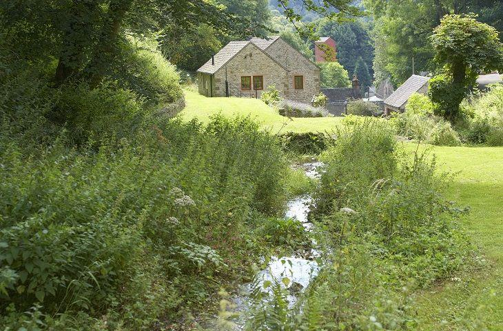 Mill Race Cottage - Image 1 - Bonsall - rentals