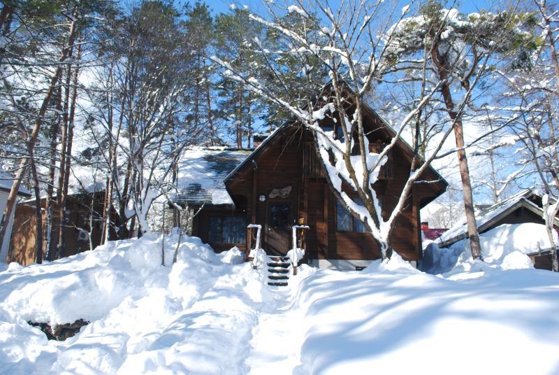 Yamaga Cabin - Yamaga Cabin Hakuba - Hakuba-mura - rentals