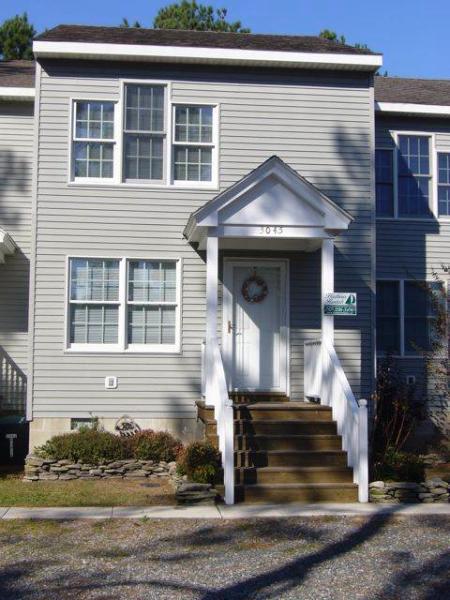 Pine Warbler - Image 1 - Chincoteague Island - rentals