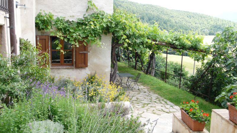 the herb garden and vine patio - Moraiolo - Assisi - rentals