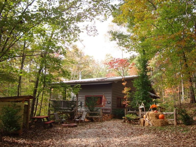 Fall at the Cabin - HANGING BED ON PORCH! Real Mnt. Cabin. Yoga Studio - Blue Ridge - rentals
