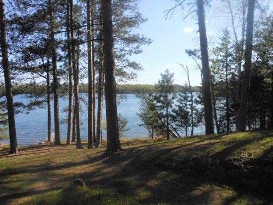 Gradual slope to the shoreline - Oakwind North: Towering Pines with a Relaxing Setting at this Eagles Nest Lake #2 cabin! - Ely - rentals