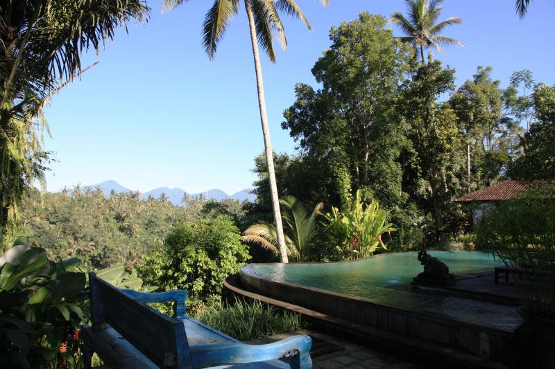Villa Bodhi 4 bedrooms villa in Ubud,Private,Spaci - Image 1 - Ubud - rentals