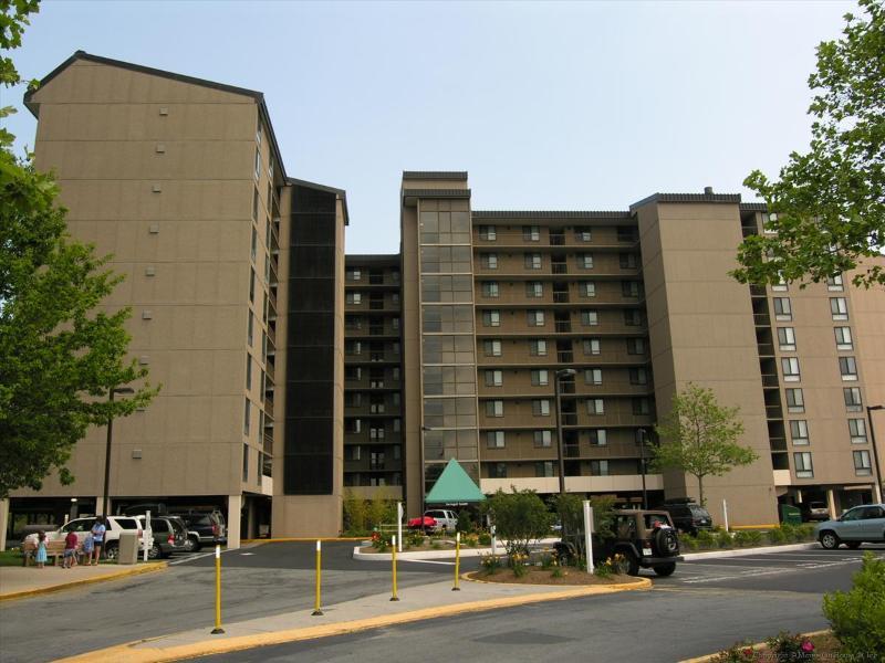 Sea Colony, 811 Farragut House - Image 1 - Bethany Beach - rentals