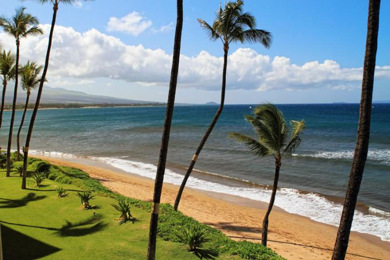 SUGAR BEACH RESORT, #329 - Image 1 - Kihei - rentals