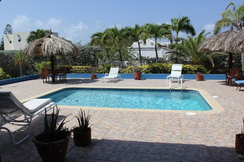 A Beautiful Aruba Salina Cerca Villa - ID:39 - Image 1 - Aruba - rentals