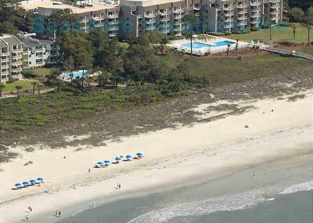 Ocean One 106 - Oceanside 1st Floor Condo - Image 1 - Hilton Head - rentals