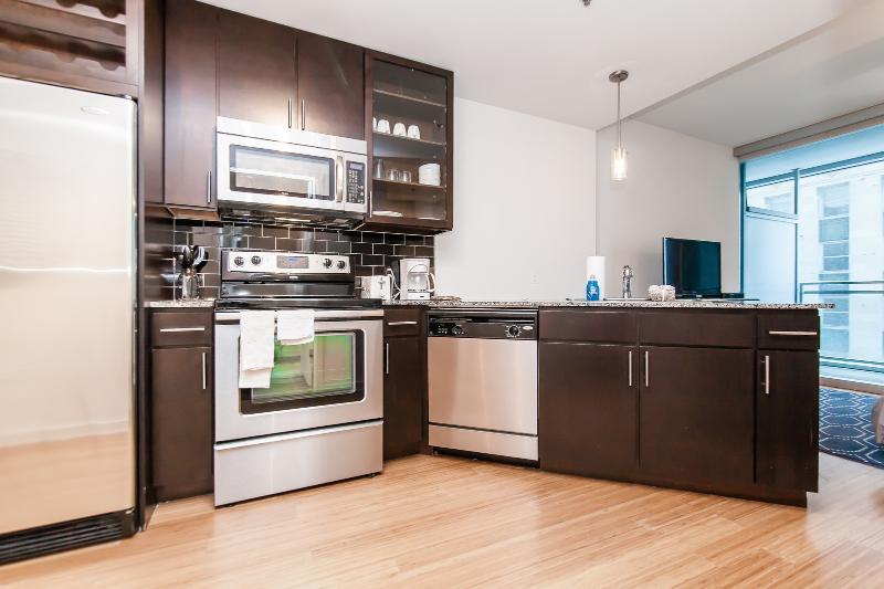 EnV Studio - Image 1 - Chicago - rentals