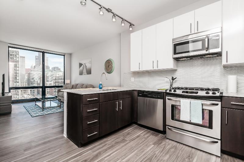 Arkadia 1 Bedroom - Image 1 - Chicago - rentals