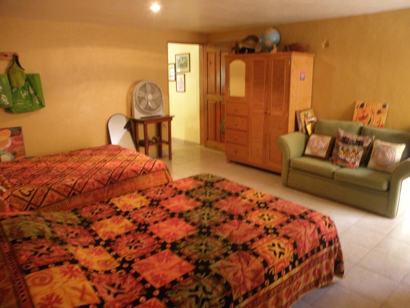 Casa Bougainvillea hidden treasure - Image 1 - Puerto Morelos - rentals