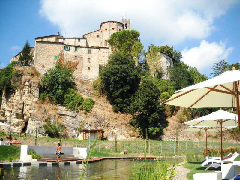thermal swimming pool near the castel - SPA - Antique house in Medieval village - 100m fro - Sasso Pisano - rentals