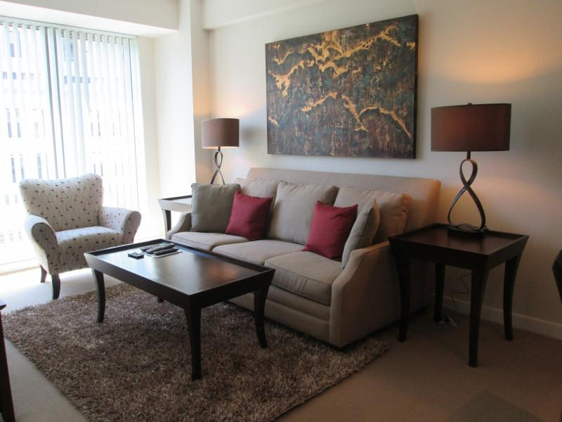 Living room - Lux 1BR near Charles St w/pool, gym - Boston - rentals