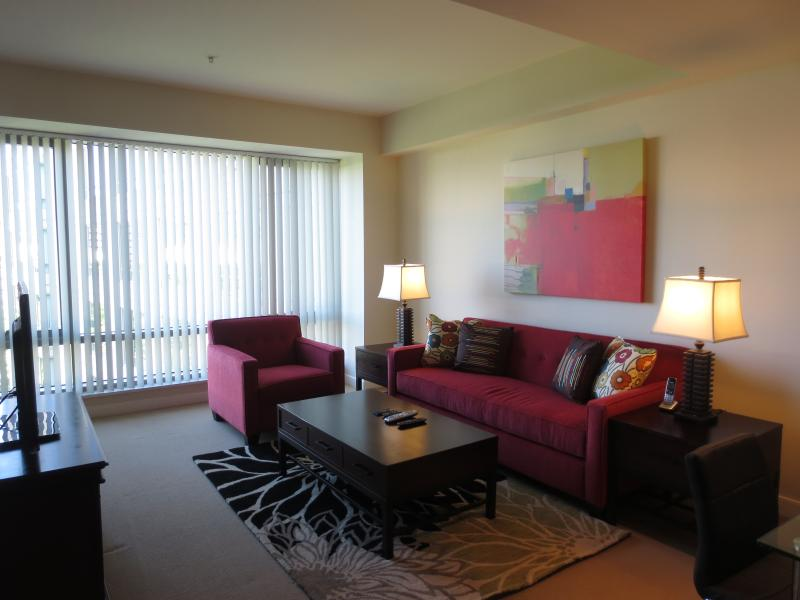 Living room - Lux 2BR near Charles St w/pool, gym - Boston - rentals
