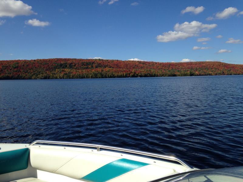 enjoy an afternoon boat ride under the sun - Four Season Muskoka Lakefront Rental - Kearney - rentals