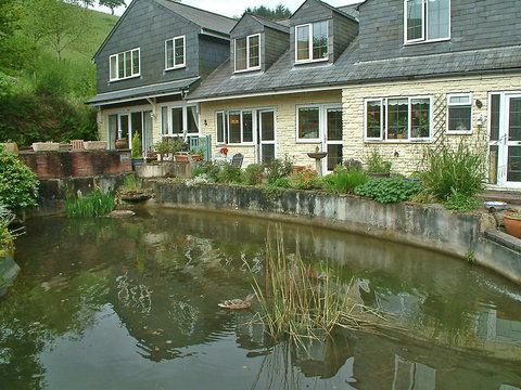 Ducks Dive ~ RA29969 - Image 1 - Looe - rentals